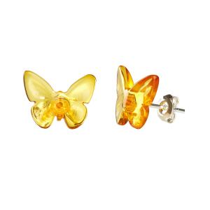"""Bernstein-Ohrstecker """"Schmetterling"""", Produktbild 1"""