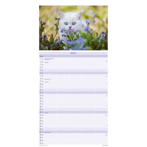 Katzen 2022 Familienplaner, Produktbild 3