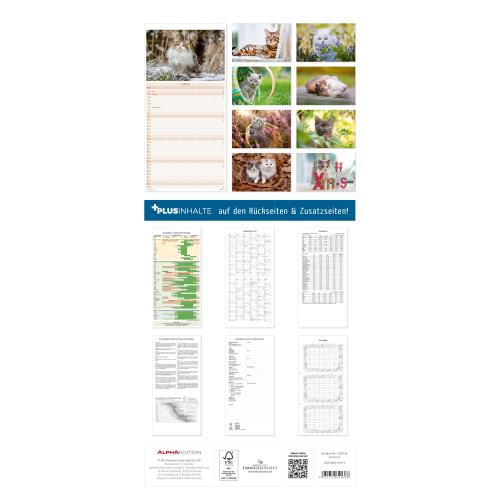 Katzen 2022 Familienplaner, Produktbild 4
