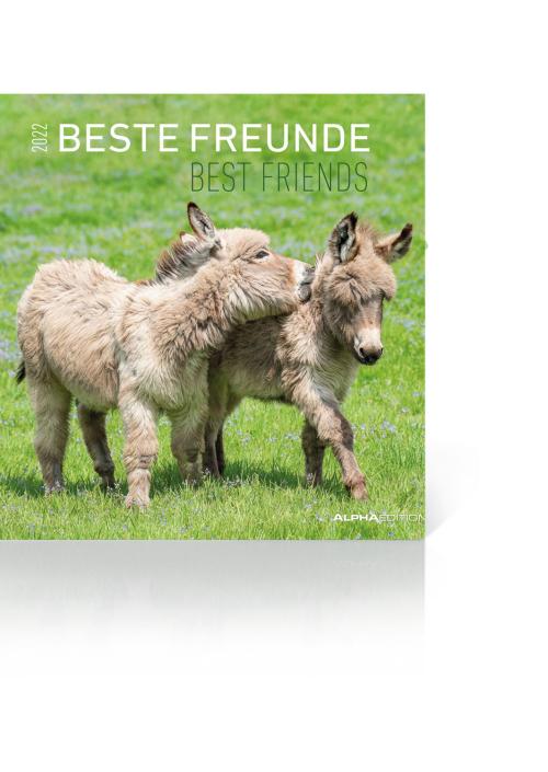 Beste Freunde Kalender 2022, Produktbild 1