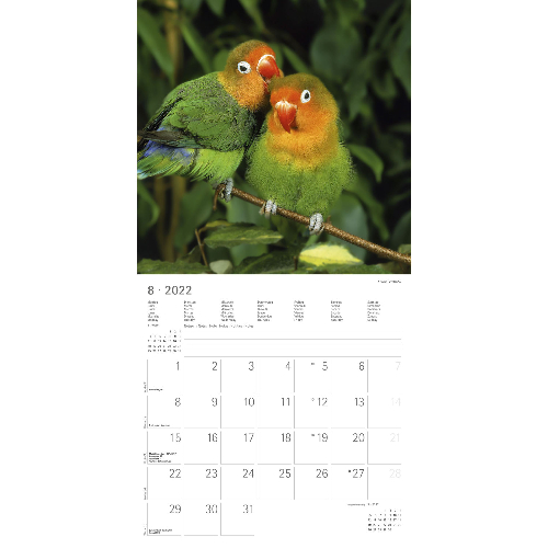 Beste Freunde Kalender 2022, Produktbild 4