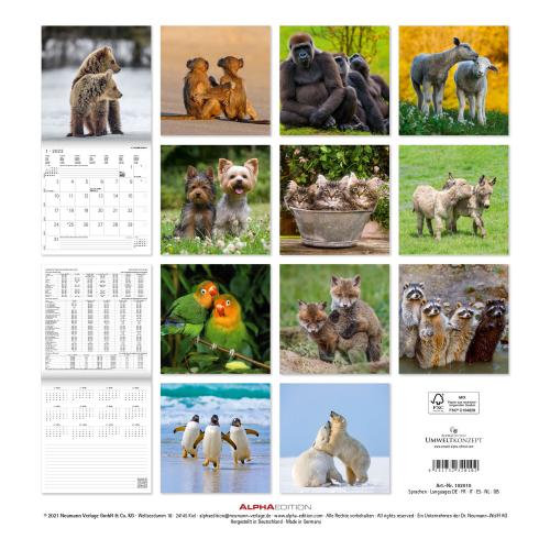Beste Freunde Kalender 2022, Produktbild 3