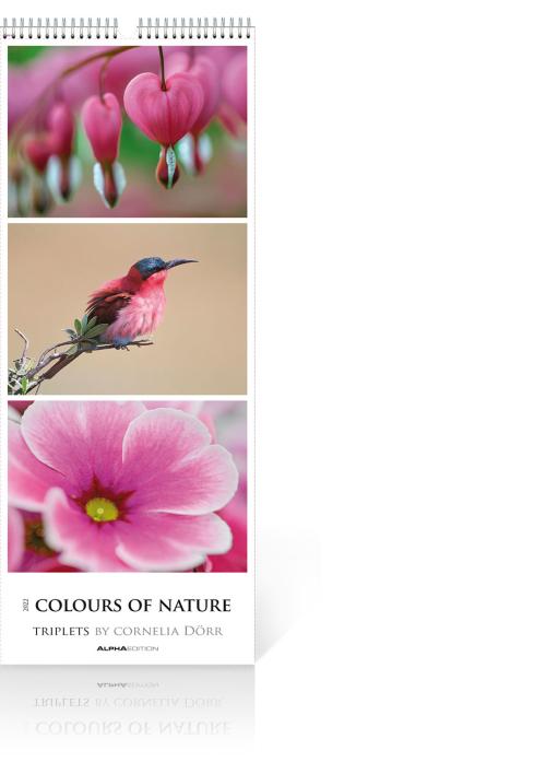 Colours of Nature – Triplets 2022, Produktbild 1