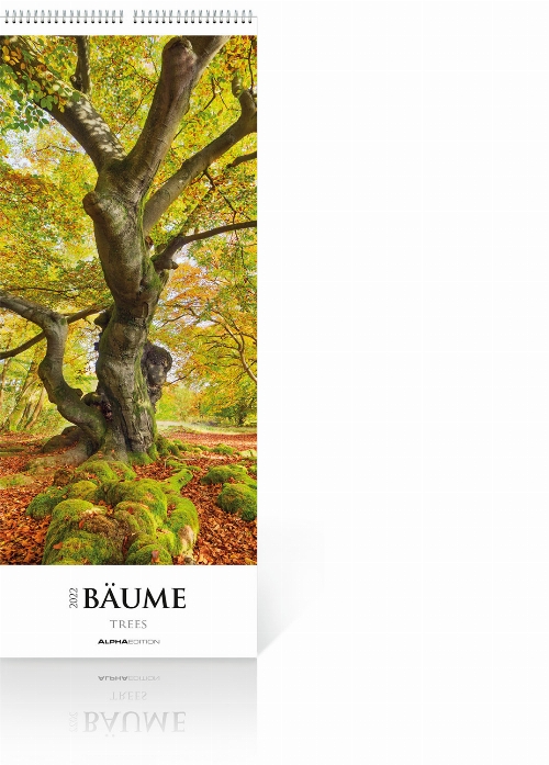 Bäume 2022 – Streifenkalender, Produktbild 1