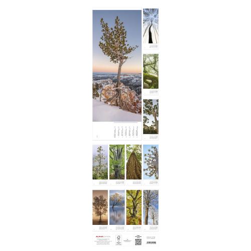 Bäume 2022 – Streifenkalender, Produktbild 2