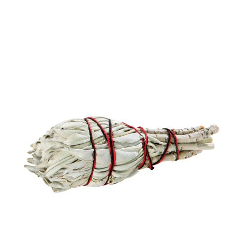 Weißer Salbei 3 Stück, klein, Produktbild 1