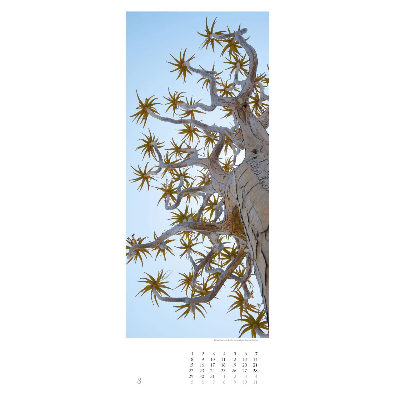 Bäume 2022 – Streifenkalender, Produktbild 3