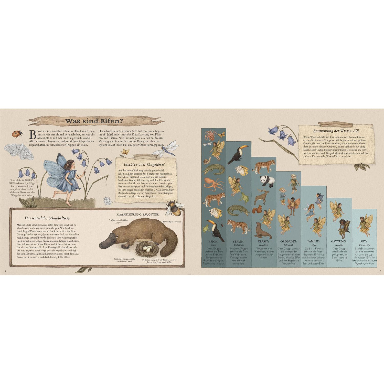 Das große Handbuch der Elfen, Produktbild 4