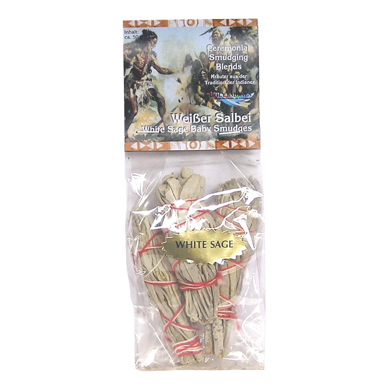 Weißer Salbei mini 3er Pack, Produktbild 2
