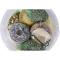 Vogelfutter, Spezialitäten-Mix, 23-teilig, Produktbild 3