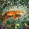 Der achtsame Tiger, Produktbild 5