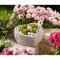 """Pflanzenschale """"Herz"""" mit Rosenornamenten, Produktbild 2"""